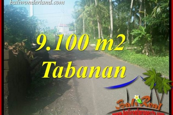 Tanah Murah Dijual di Tabanan Bali TJTB407