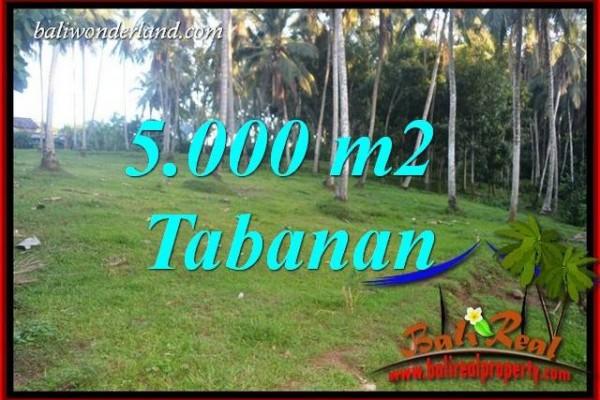 JUAL Tanah di Tabanan Bali Untuk Investasi TJTB408