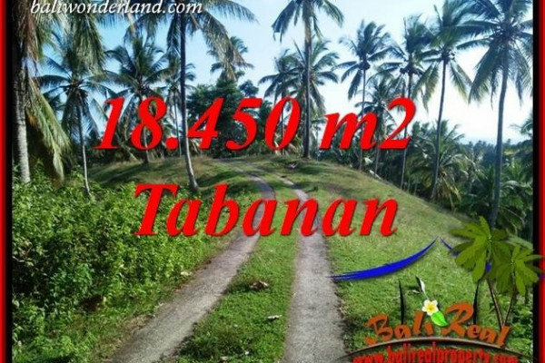 Tanah Murah Dijual di Tabanan Bali 18,450 m2 di Tabanan Selemadeg