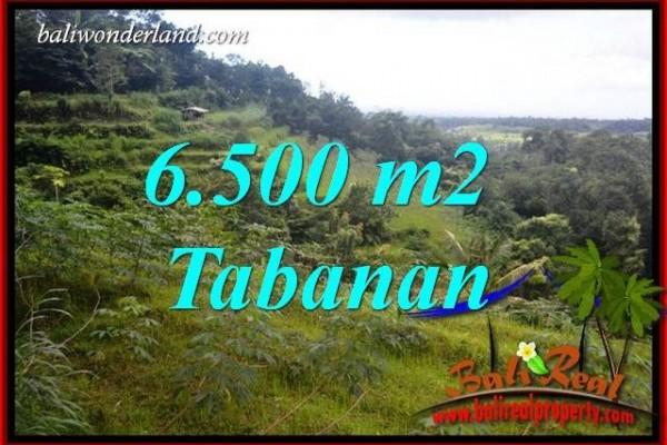 Tanah Dijual di Tabanan Bali 6,500 m2 di Tabanan Penebel