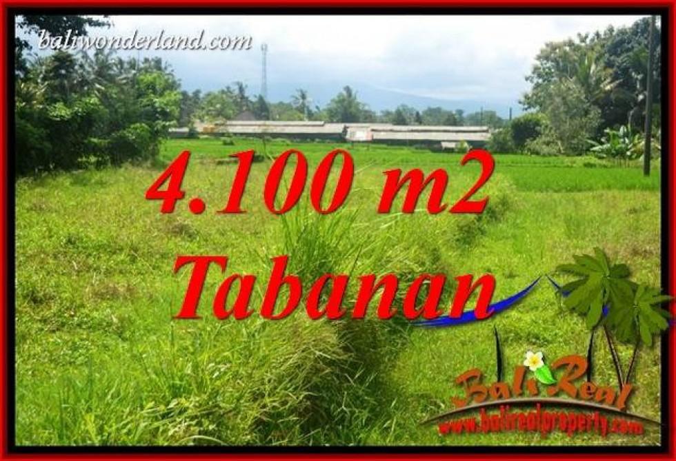 Tanah Murah di Tabanan Bali Dijual 4,100 m2 di Tabanan Penebel
