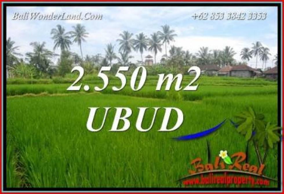 Tanah di Ubud Bali jual Murah 2,550 m2  View sawah dan pangkung lingk. villa