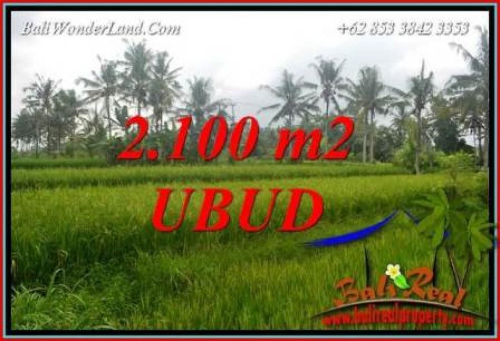 Tanah Murah  di Ubud Bali Dijual 2,100 m2  View Sawah