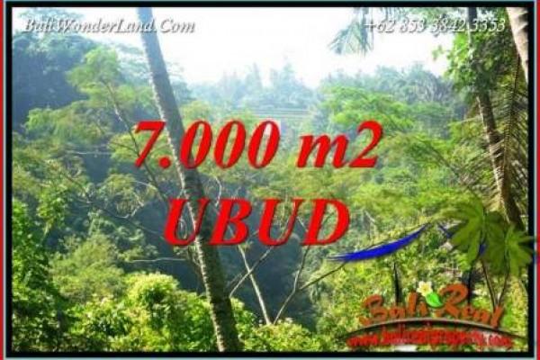 JUAL Murah Tanah di Ubud Bali 7,000 m2 View Tebing dan sungai