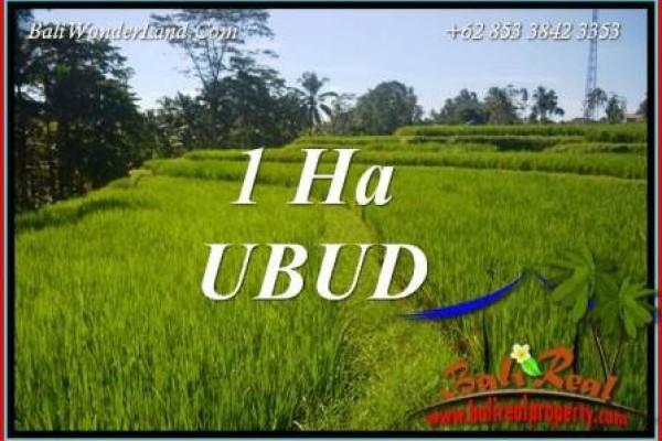 Tanah Murah di Ubud Bali 100 Are View Sawah dan Sungai