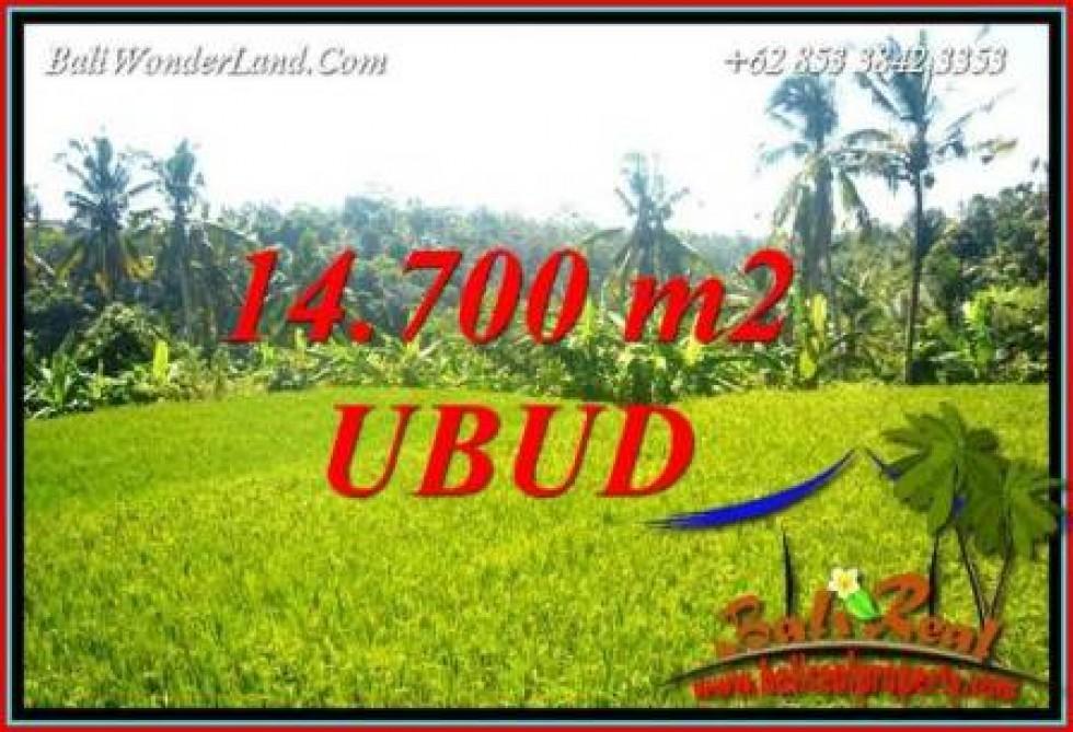 Tanah Dijual di Ubud Bali 147 Are View Sawah dan Sungai