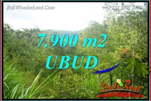Investasi Properti, Dijual Tanah di Ubud TJUB729