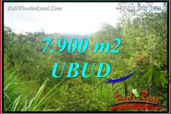 Tanah di Ubud Bali Dijual 79 Are View Tebing dan sungai