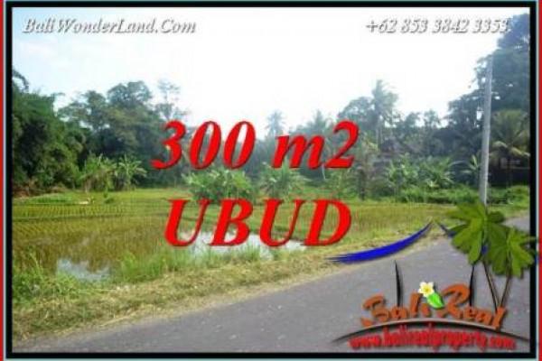 JUAL Murah Tanah di Ubud Bali 300 m2  View lingkungan villa