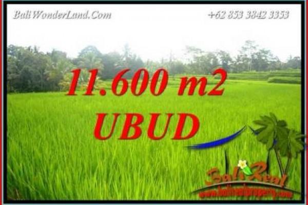 Investasi Properti, Tanah Murah Dijual di Ubud Bali TJUB732