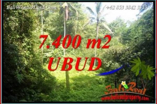 Dijual Murah Tanah di Ubud Bali Untuk Investasi TJUB734