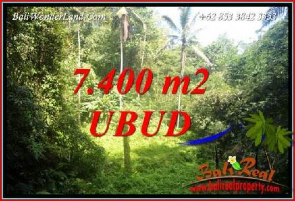 Tanah Murah di Ubud Bali Dijual 77 Are di Ubud Tegalalang
