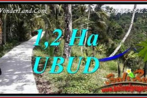 Dijual Murah Tanah di Ubud Bali TJUB740