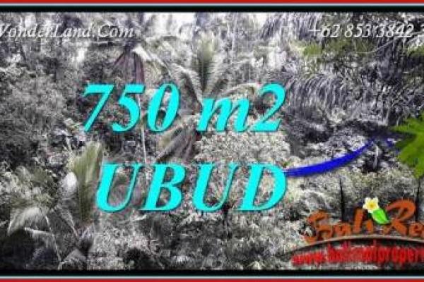Investasi Properti, Tanah Dijual di Ubud Bali TJUB742