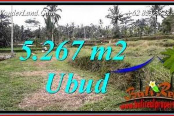 JUAL Tanah di Ubud Bali 53 Are View sawah