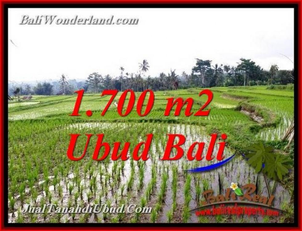 TANAH di UBUD DIJUAL MURAH 1,700 m2 di TEGALALANG UBUD
