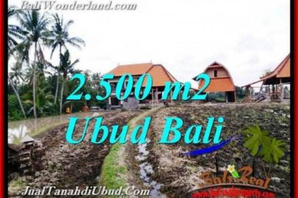 TANAH MURAH di UBUD BALI DIJUAL Untuk INVESTASI TJUB772