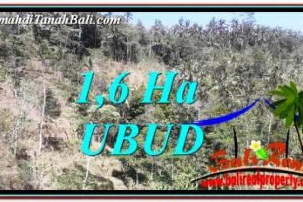 DIJUAL MURAH TANAH di UBUD BALI 16,000 m2 di Ubud Tegalalang