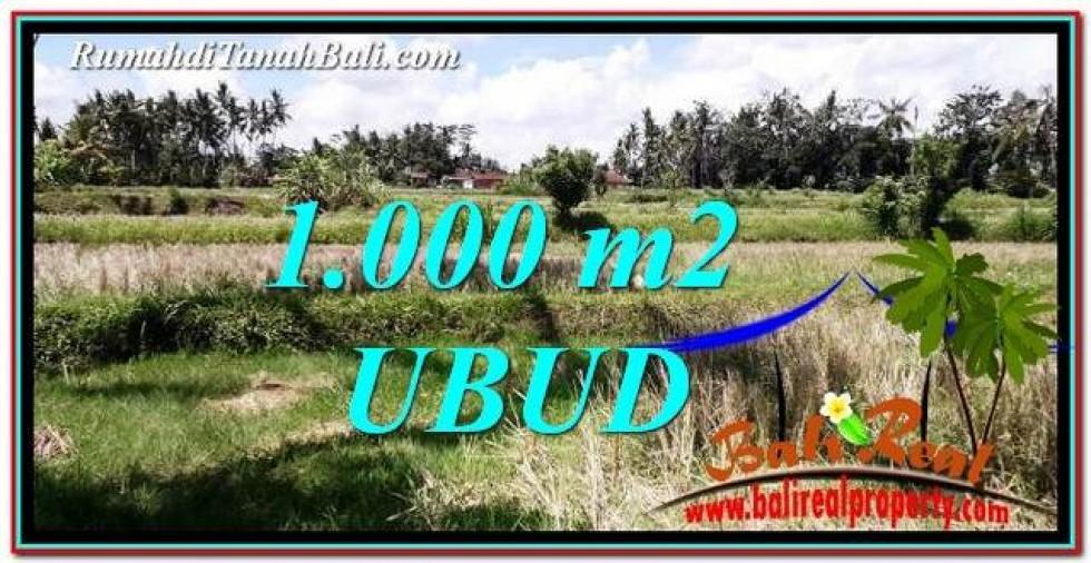TANAH MURAH di UBUD 1,000 m2  View Sawah dan tebing