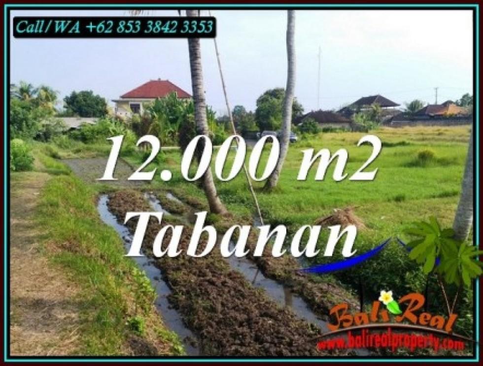 JUAL MURAH TANAH di TABANAN 12,000 m2 di KERAMBITAN TABANAN