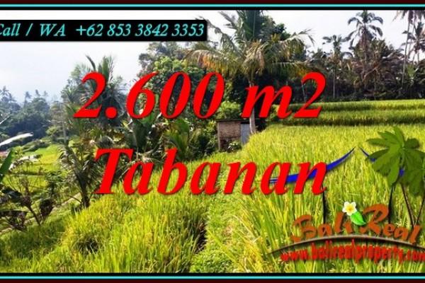 TANAH MURAH DIJUAL di TABANAN BALI 26 Are di PENEBEL TABANAN
