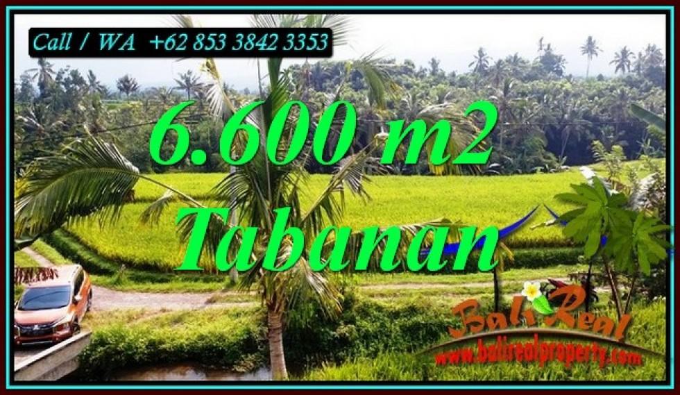 TANAH MURAH DIJUAL di TABANAN BALI 6,600 m2 di PENEBEL TABANAN