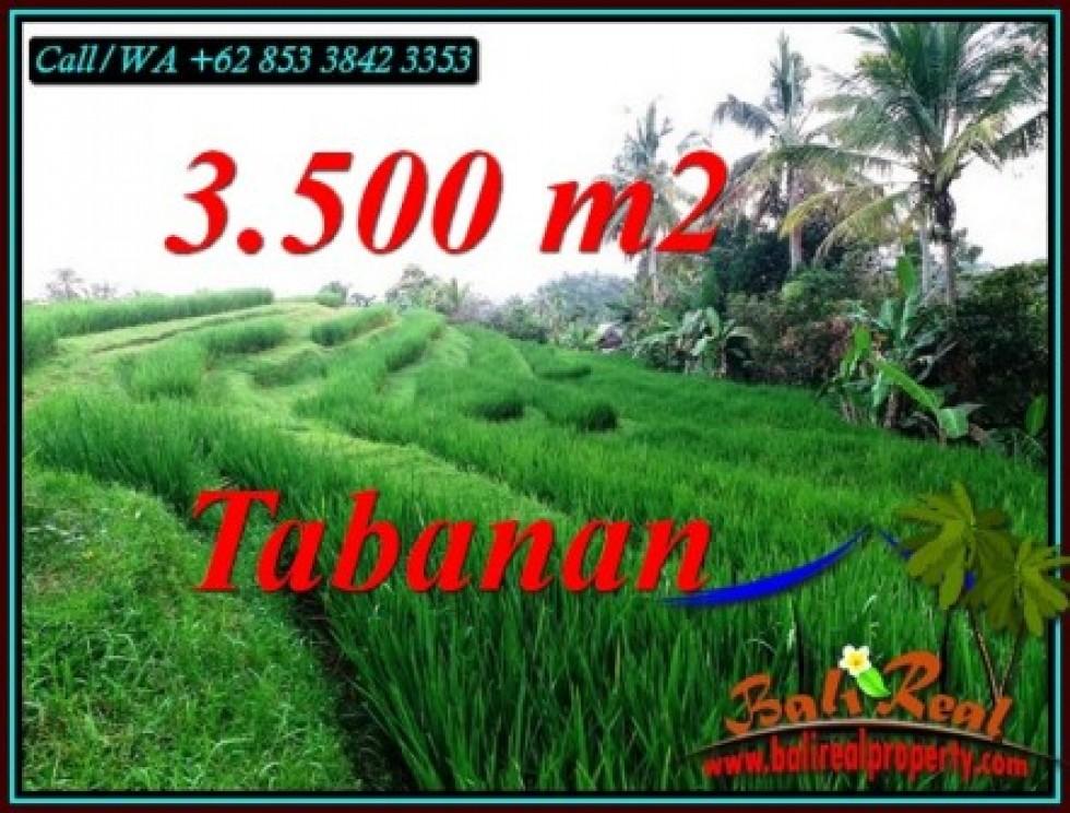 TANAH MURAH DIJUAL di TABANAN BALI 35 Are di SELEMADEG TIMUR TABANAN