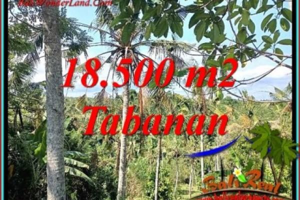 DIJUAL TANAH DI TABANAN BALI 18,500 m2 di SELEMADEG BARAT