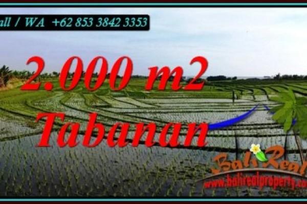 DIJUAL TANAH DI TABANAN BALI Untuk INVESTASI TJTB493