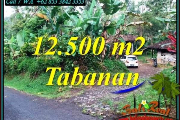 DIJUAL MURAH TANAH di TABANAN 12,000 m2 di SELEMADEG BARAT