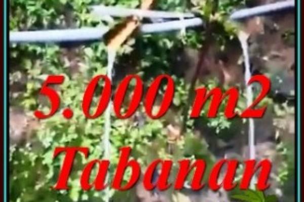TANAH MURAH DIJUAL di TABANAN Untuk INVESTASI TJTB476