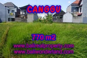TANAH DI CANGGU DIJUAL TJCG148 – INVESTASI PROPERTY DI BALI