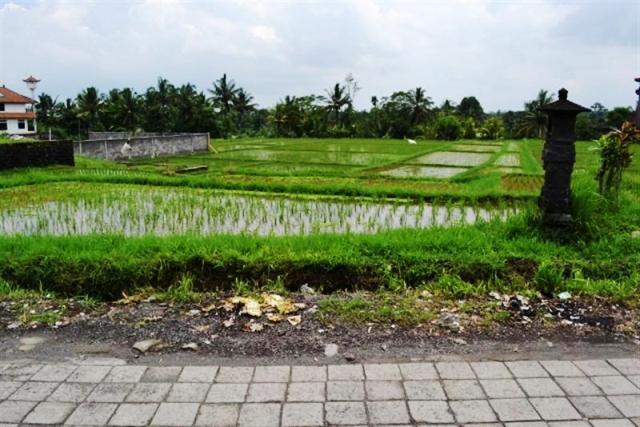 Tanah dijual di Ubud 8 are di Jl. Bisma - TJUB052B