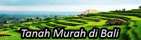 Tanah Murah di Bali