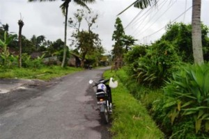 land for sale in ubud kukuh 2
