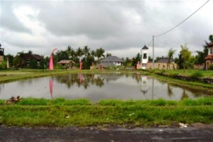 land for sale in ubud kukuh 4