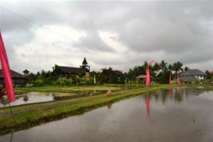 land for sale in ubud kukuh 5