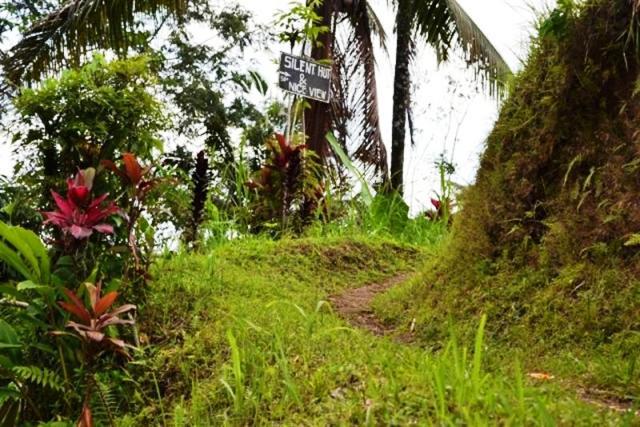 Tanah dijual di Ubud DI TEPI SUNGAI AYUNG -  TJUB065B