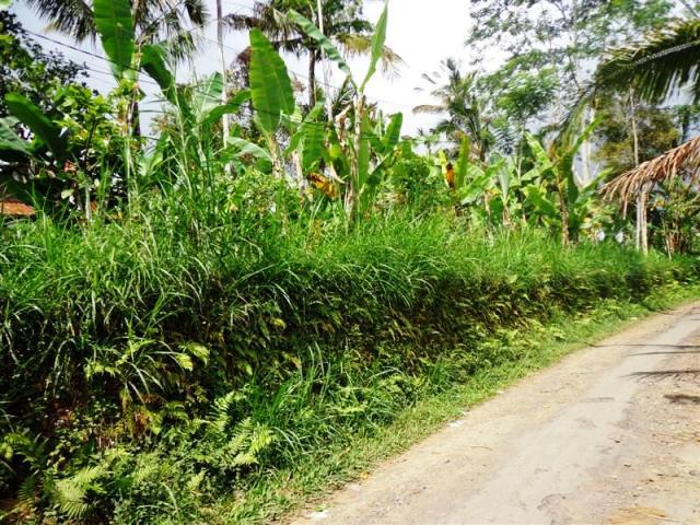 Tanah dijual di Ubud Pinggir jalan ( TJUB100B )