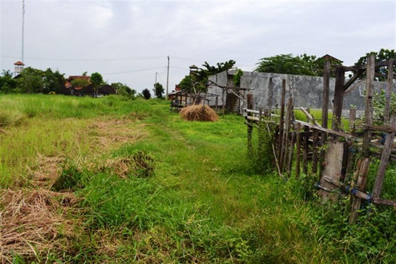 Jual Tanah di Canggu Bali view sawah dekat dengan Echo Beach Canggu - TJCG031B