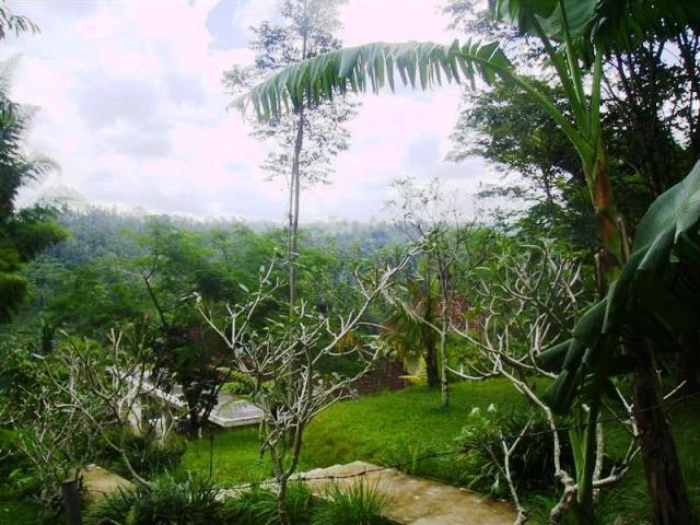 Tanah dijual di Ubud Payangan, view sawah dan tebing tepi sungai - TJUB071B