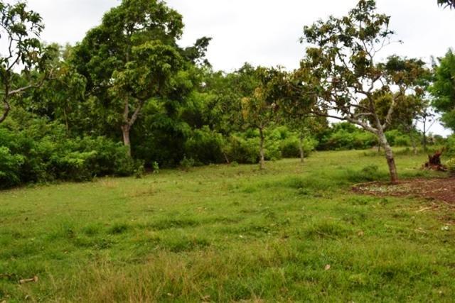 Jual tanah di Jimbaran dekat villa 14 are @ 135 Juta