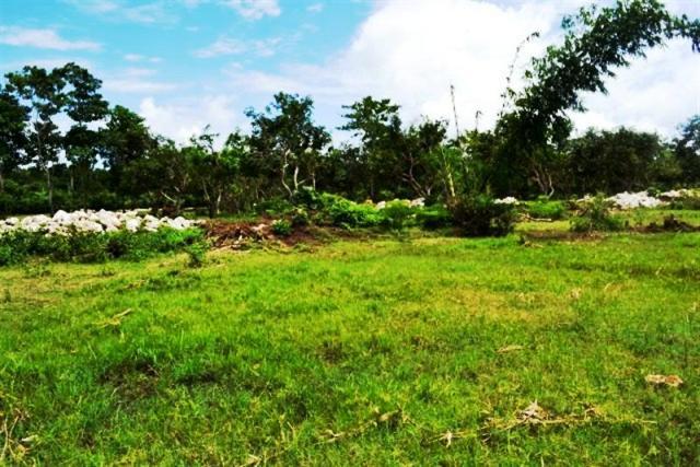 Jual tanah di Jimbaran lingkungan villa 15 are @ 125 Juta