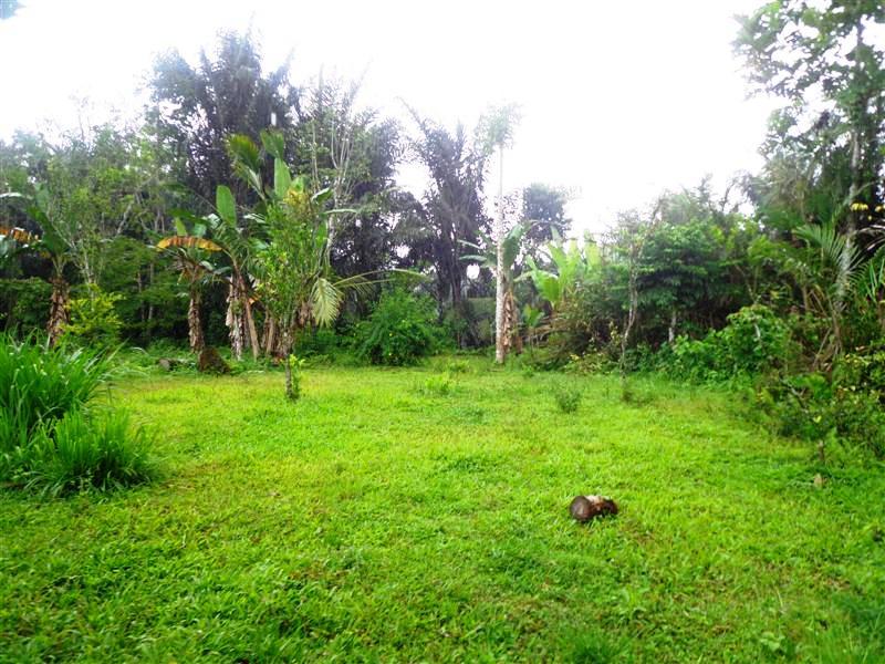 Jual Tanah di Ubud dekat bagus jati Hotel – TJUB136B