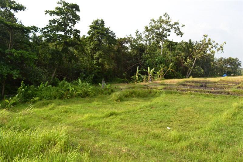 Jual Tanah Di Canggu Bali dekat dengan Pantai Canggu View sawah dan sungai – TJCG073B
