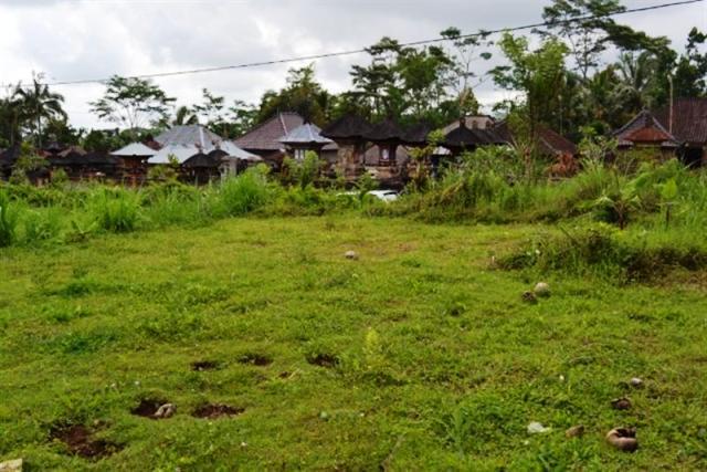 Jual tanah di Ubud - TJUB004 berlokasi di Manuk Aya