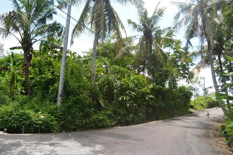 Tanah di Canggu dijual 1,300 m2 di Canggu Pererenan