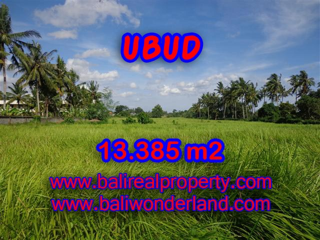 Jual tanah di Ubud Bali