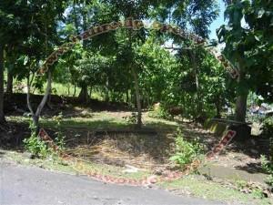 Tanah dijual ( Land for sale ) di Jimbaran Bali