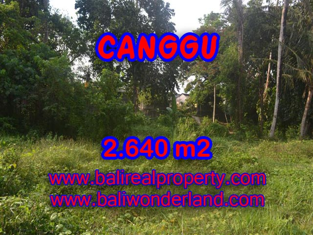 Jual tanah di Canggu 2,640 m2 di Brawa